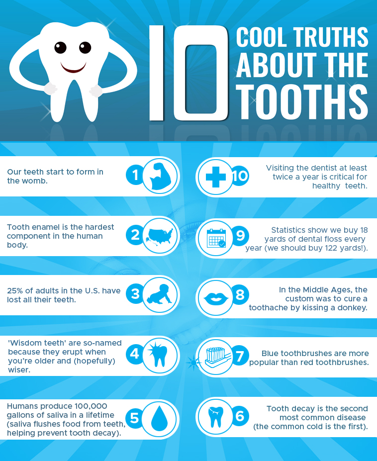 10 Cool Truths About The Tooths